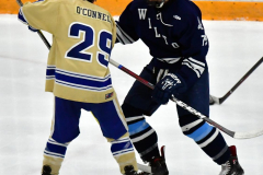 CIACT D3 Ice Hockey; #8 Newtown 7 vs. #9 Wilton 2 - Photo # 1359