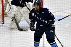 CIACT D3 Ice Hockey; #8 Newtown 7 vs. #9 Wilton 2 - Photo # 1361