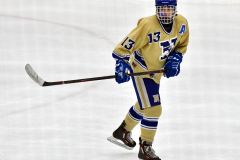 CIACT D3 Ice Hockey; #8 Newtown 7 vs. #9 Wilton 2 - Photo # 1365
