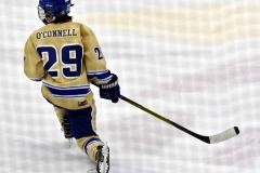 CIACT D3 Ice Hockey; #8 Newtown 7 vs. #9 Wilton 2 - Photo # 1368