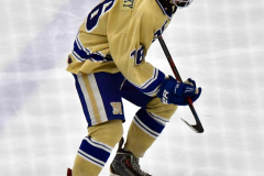 CIACT D3 Ice Hockey; #8 Newtown 7 vs. #9 Wilton 2 - Photo # 1370