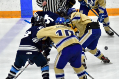 CIACT D3 Ice Hockey; #8 Newtown 7 vs. #9 Wilton 2 - Photo # 1371