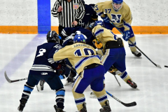 CIACT D3 Ice Hockey; #8 Newtown 7 vs. #9 Wilton 2 - Photo # 1372