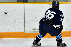 CIACT D3 Ice Hockey; #8 Newtown 7 vs. #9 Wilton 2 - Photo # 1376