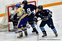 CIACT D3 Ice Hockey; #8 Newtown 7 vs. #9 Wilton 2 - Photo # 1379
