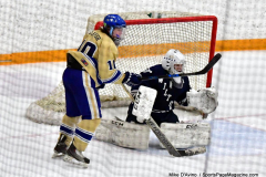 CIACT D3 Ice Hockey; #8 Newtown 7 vs. #9 Wilton 2 - Photo # 1384