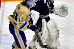 CIACT D3 Ice Hockey; #8 Newtown 7 vs. #9 Wilton 2 - Photo # 1385