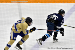 CIACT D3 Ice Hockey; #8 Newtown 7 vs. #9 Wilton 2 - Photo # 1386