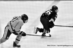 CIACT D3 Ice Hockey; #8 Newtown 7 vs. #9 Wilton 2 - Photo # 1387