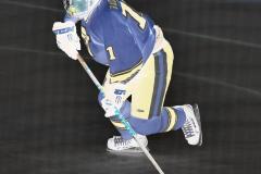 CIACT D3 Ice Hockey; #8 Newtown 7 vs. #9 Wilton 2 - Photo # 1390