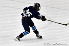 CIACT D3 Ice Hockey; #8 Newtown 7 vs. #9 Wilton 2 - Photo # 1391