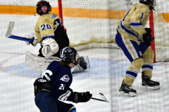 CIACT D3 Ice Hockey; #8 Newtown 7 vs. #9 Wilton 2 - Photo # 1395