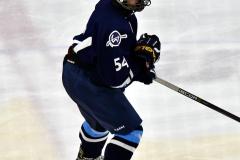 CIACT D3 Ice Hockey; #8 Newtown 7 vs. #9 Wilton 2 - Photo # 1397