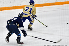 CIACT D3 Ice Hockey; #8 Newtown 7 vs. #9 Wilton 2 - Photo # 1405