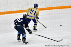 CIACT D3 Ice Hockey; #8 Newtown 7 vs. #9 Wilton 2 - Photo # 1406