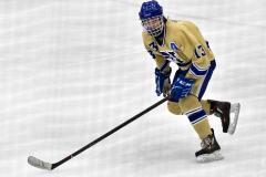 CIACT D3 Ice Hockey; #8 Newtown 7 vs. #9 Wilton 2 - Photo # 1408