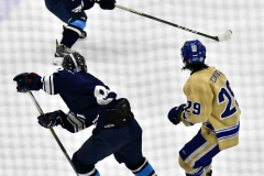CIACT D3 Ice Hockey; #8 Newtown 7 vs. #9 Wilton 2 - Photo # 1410