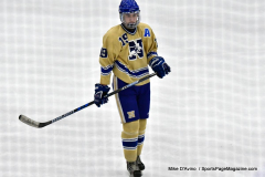 CIACT D3 Ice Hockey; #8 Newtown 7 vs. #9 Wilton 2 - Photo # 1414