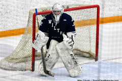 CIACT D3 Ice Hockey; #8 Newtown 7 vs. #9 Wilton 2 - Photo # 1422
