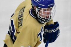 CIACT D3 Ice Hockey; #8 Newtown 7 vs. #9 Wilton 2 - Photo # 1428