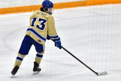 CIACT D3 Ice Hockey; #8 Newtown 7 vs. #9 Wilton 2 - Photo # 1431