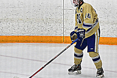 CIACT D3 Ice Hockey; #8 Newtown 7 vs. #9 Wilton 2 - Photo # 1434