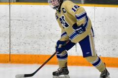 CIACT D3 Ice Hockey; #8 Newtown 7 vs. #9 Wilton 2 - Photo # 1435
