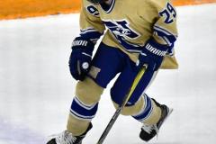 CIACT D3 Ice Hockey; #8 Newtown 7 vs. #9 Wilton 2 - Photo # 1440