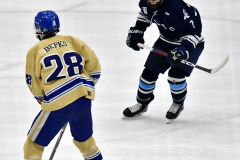 CIACT D3 Ice Hockey; #8 Newtown 7 vs. #9 Wilton 2 - Photo # 1446