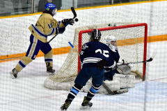 CIACT D3 Ice Hockey; #8 Newtown 7 vs. #9 Wilton 2 - Photo # 1452