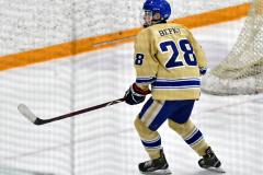 CIACT D3 Ice Hockey; #8 Newtown 7 vs. #9 Wilton 2 - Photo # 1456