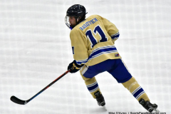 CIACT D3 Ice Hockey; #8 Newtown 7 vs. #9 Wilton 2 - Photo # 1458