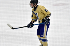 CIACT D3 Ice Hockey; #8 Newtown 7 vs. #9 Wilton 2 - Photo # 1460