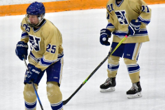 CIACT D3 Ice Hockey; #8 Newtown 7 vs. #9 Wilton 2 - Photo # 1465