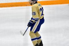 CIACT D3 Ice Hockey; #8 Newtown 7 vs. #9 Wilton 2 - Photo # 1468