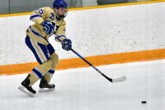 CIACT D3 Ice Hockey; #8 Newtown 7 vs. #9 Wilton 2 - Photo # 1473