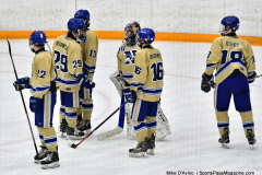CIACT D3 Ice Hockey; #8 Newtown 7 vs. #9 Wilton 2 - Photo # 1479