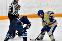 CIACT D3 Ice Hockey; #8 Newtown 7 vs. #9 Wilton 2 - Photo # 1487