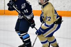 CIACT D3 Ice Hockey; #8 Newtown 7 vs. #9 Wilton 2 - Photo # 1500