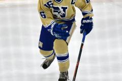CIACT D3 Ice Hockey; #8 Newtown 7 vs. #9 Wilton 2 - Photo # 1503