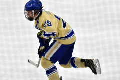 CIACT D3 Ice Hockey; #8 Newtown 7 vs. #9 Wilton 2 - Photo # 1508