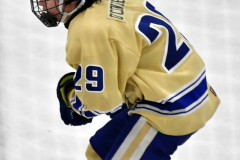 CIACT D3 Ice Hockey; #8 Newtown 7 vs. #9 Wilton 2 - Photo # 1509