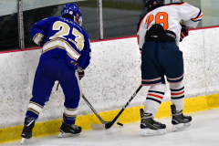 CIAC Ice Hockey; L.H.- H-K, Cogin. 8 vs Newtown 1 - Photo # (1012)
