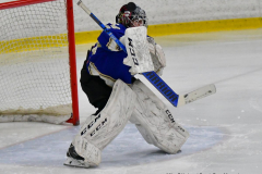 CIAC Ice Hockey; L.H.- H-K, Cogin. 8 vs Newtown 1 - Photo # (116)