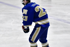 CIAC Ice Hockey; L.H.- H-K, Cogin. 8 vs Newtown 1 - Photo # (163)