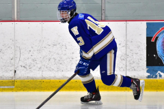 CIAC Ice Hockey; L.H.- H-K, Cogin. 8 vs Newtown 1 - Photo # (25)