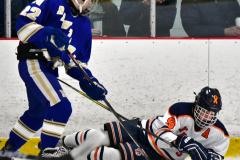 CIAC Ice Hockey; L.H.- H-K, Cogin. 8 vs Newtown 1 - Photo # (273)