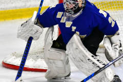 CIAC Ice Hockey; L.H.- H-K, Cogin. 8 vs Newtown 1 - Photo # (307)