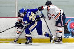 CIAC Ice Hockey; L.H.- H-K, Cogin. 8 vs Newtown 1 - Photo # (317)