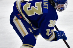 CIAC Ice Hockey; L.H.- H-K, Cogin. 8 vs Newtown 1 - Photo # (327)